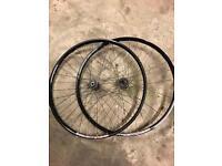 Sram / pacenti 29er mtb wheels wheelset