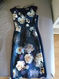 Camillia rose dress size 8