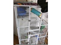 Large Cage Bird / Rat / Rodent. Plus accessories including drop feeder, running wheel, bed etc