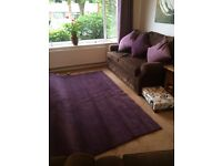Brand New Aubergene Carpet to suit Box Room