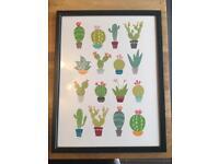 Framed cactus / cacti print. A3 size.
