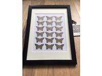 Butterflies 3d Picture