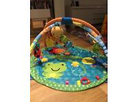 Taggies Baby Play Gym