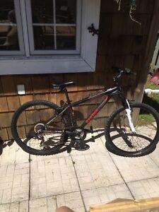 15' Reebok Empire Mountain Bike
