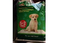 FREE Toilet training PUPPY PADS