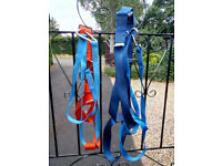 Sailing safety harnesses