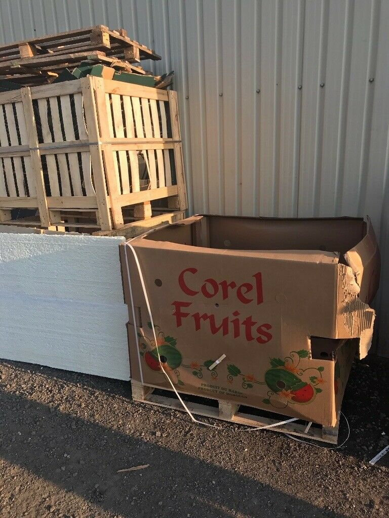Free watermelon pallets and cardboard boxes   in Waltham ...