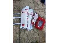 Cricket pads, gloves and bag