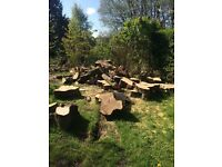 Big Logs , fab for Firewood or projects