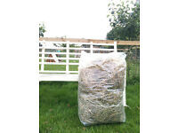 HAY FOR SALE - Chemical free, perfect for small furries.