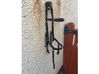 Black Micklem Bridle Horse sized £75
