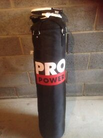 Pro power punch bag with gloves