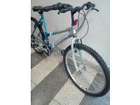 Ladies british eagle bike