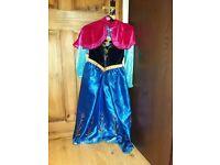 Frozen Fancy Dress