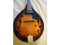 Fender mandolin fm52e