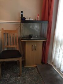 Nice looking fish tank for sale with cupboard and working light and heater