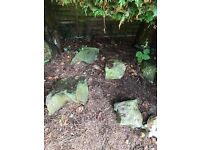 FREE Rocks for Rockery (large and small)