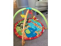 Play Mat - Free to a good home
