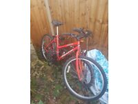 Red girls bike