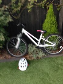 Adult All Terrain Bicycle