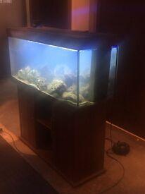 Juwel 240 Marine Fish Tank! Comes with Filter,Fan,lights & heater.
