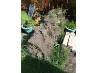 Free soil from lawn - must collect