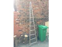 A Frame Ramsay Ladder - Window Cleaning