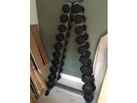Rubber Hex Dumbbell Set and Storage Tree