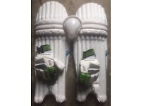 Cricket Pads, Gloves & Box