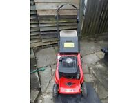 Ibea Petrol lawnmower with rear roller
