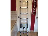 Telescopic Ladder Brand New BARGAIN