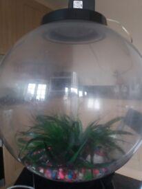 60 litre orb fish tank