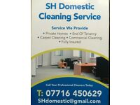SH Demestic cleaning service