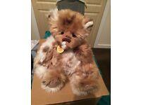 Charlie Bear Artemis For Sale