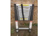 Telescopic collapsible ladders