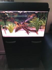 64litre fish tank for sale.