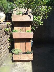 Two herb planters for sale BR6