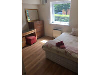 No Contract or referencing fees. Ensuite @ £162/ cheap renting in the area.