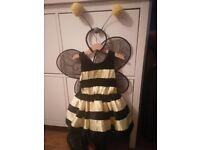Bumblebee fancy dress for kids