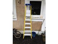 6 step young man ladder new
