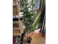 IKEA plastic bamboo tree