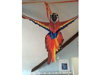 Big red parrot kite