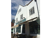 Chef and Kitchen Porter needed for Hove gastro pub. Great pay and friendly working environment