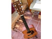 Martin 000-16 GT with pickup and case