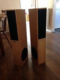 Eltax Hollywood 180W floor standing wood effect speakers