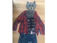Wild Grey Wolf Costume with sound age 11-12 age