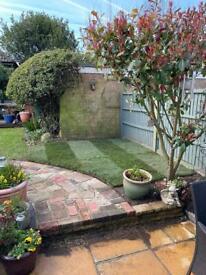 Garden maintenance and pressure wash
