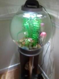Biorb fish tank forsale