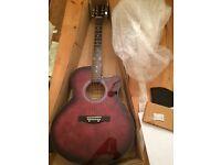 Electric Guitar - Benson Electro-Electric Guitar Cut Away Purple Burst