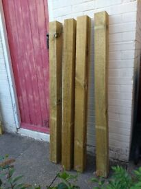 Treated wood fence posts